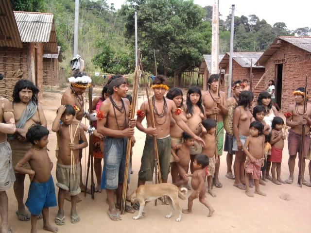 Tribos Awá Guajá vivem impasse com terras