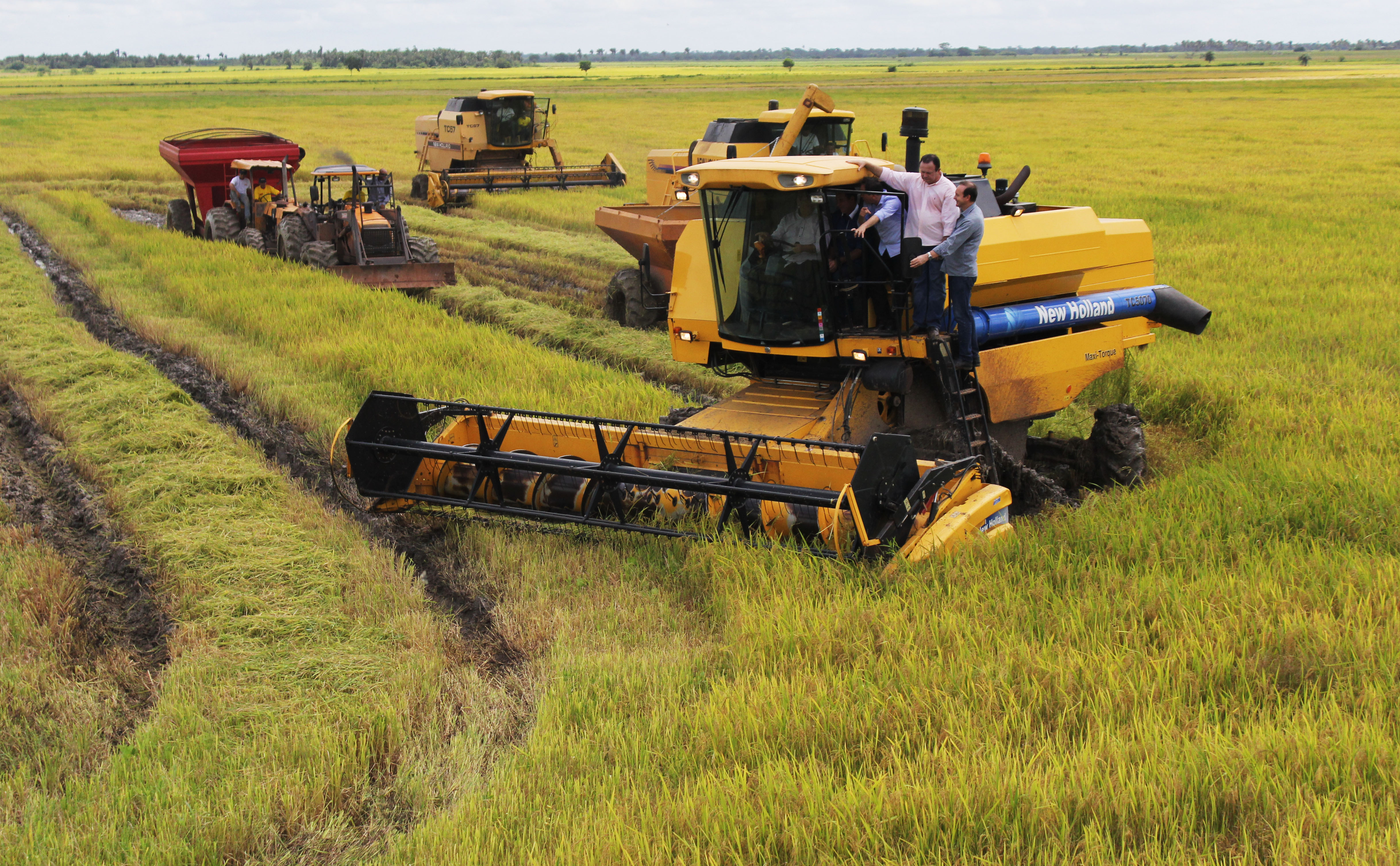 Após 22 anos, projeto Salangô é retomado no Maranhão